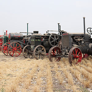 Tyler family tractor auction